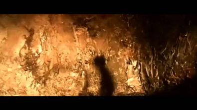 O Mito da Caverna: Platão - Dublado
