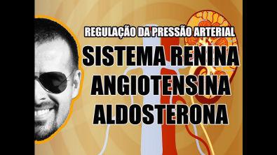 Vídeo Aula 032 - Regulação da pressão arterial através do sistema Renina-Angiotensina-Aldosterona