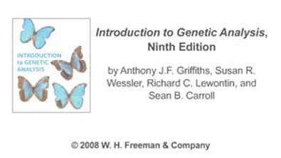 Vídeo- Replicação do Cromossomo