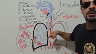 Vídeo Aula 018 - Sistema Respiratório - Anatomia Humana - Estrutura e funções gerais das vias aéreas