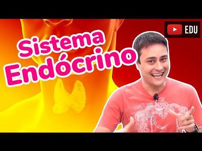 Sistema Endócrino - Hormônios - Prof. Paulo Jubilut