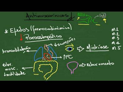 Antimuscarínicos (Parassimpatolíticos) - Resumo - Farmacologia