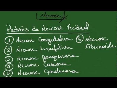 Necrose, Apoptose, Pigmentações e Calcificações - Resumo - Patologia Geral