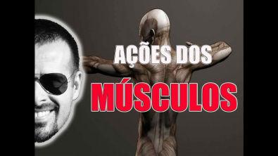 Vídeo Aula 023 - Sistema Muscular: Ações dos músculos de um jeito fácil de entender