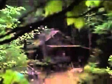 Filme Nell (1994) Trailer