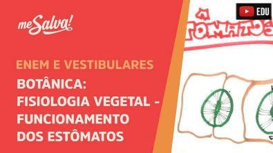 Me Salva! BOT28 - Fisiologia vegetal: funcionamento dos estômatos