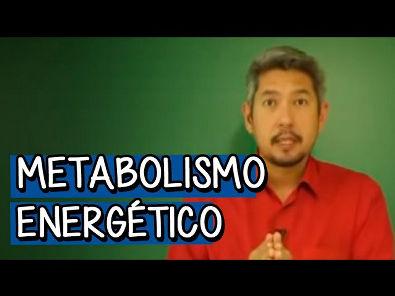 Metabolismo Energético: Respiração Celular
