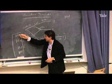 Yale- Incerteza e Hipótese das Expectativas Racionais