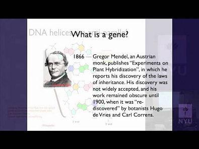 NYU - Replicação do DNA e o Código Genético- em inglês