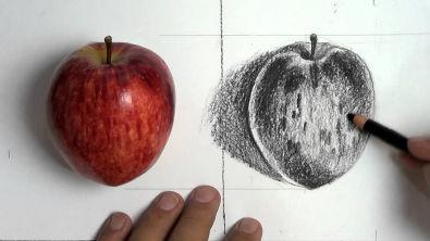 Como Fazer : Desenho de Observação / Maçã