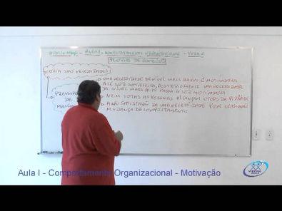 Gestão de Pessoas - Motivação parte I - Professor Luis Octavio - www.profluisoctavio.com