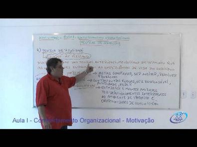 Gestão de Pessoas Comportametno Organizacional   Motivação Parte II - www.profluisoctavio.com