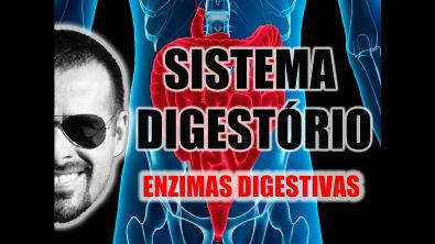 Vídeo Aula 026 - Sistema Digestório: As enzimas digestivas e os processos químicos da digestão
