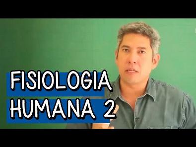 Resumo para o ENEM: Fisiologia Humana 2 - Biologia | Descomplica
