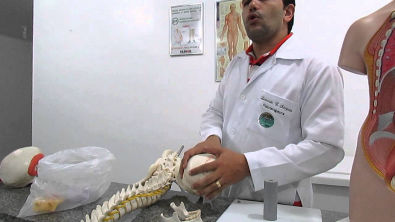 Articulação, Raízes e Músculos (Prof. Leonardo Sampaio)