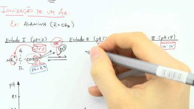 Bioquímica (Introdução 7) - Equilíbrio Ácido-Básico 3