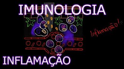 Imunologia #2 - Inflamação [Teoria da Medicina]