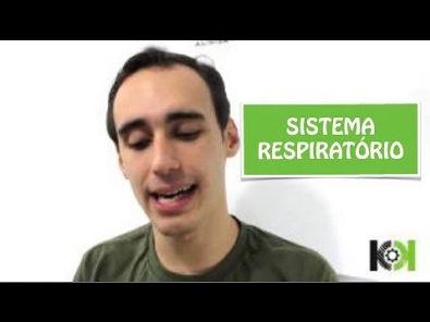Fisiologia Animal - Sistema Respiratório