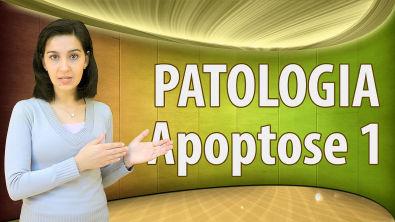 Patologia - Apoptose - Conceitos básicos - aula 1