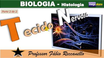 Tecido Nervoso (parte 2 de 2) - impulso nervoso e sinapses