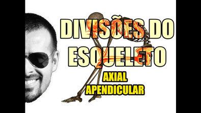 Vídeo Aula 049 - Sistema Esquelético/Ósseo - Divisões do Esqueleto: Esqueleto Axial e Apendicular