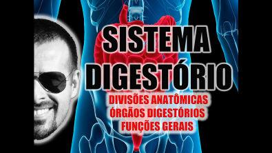 Vídeo Aula 024 - Sistema Digestório:  Divisões anatômicas, órgãos digestórios e funções gerais