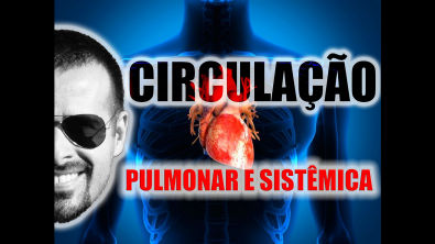 Vídeo Aula 004 - Sistema Circulatório: Circulação pulmonar e circulação sistêmica (esquema didático)