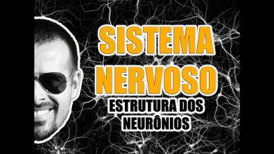 Vídeo Aula 008 - Sistema Nervoso: Estrutura dos neurônios e sinapse