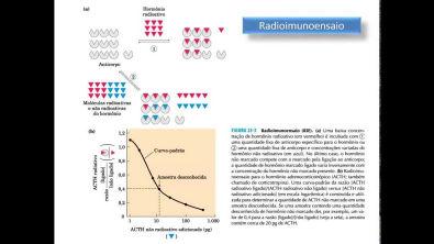 Bioquímica Clínica: Avaliação laboratorial da função endócrina