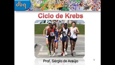 Curso de Bioquímica: Ciclo de Krebs (parte I)