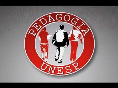 Referencial Curricular Nacional para a educação infantil - um panorama sobre o documento