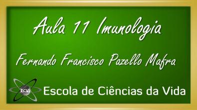 Imunologia: Aula 11 - Maturação de linfócitos - introdução