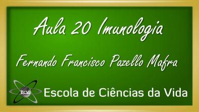 Imunologia: Aula 20 - Maturação de linfócitos T - parte 2
