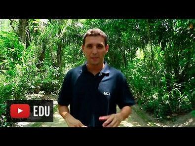 Educação Ambiental - Ep. 1: Ecossistema e desequilíbrio ecológico