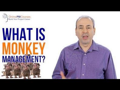 What is Monkey Management (Oncken's Monkey)?