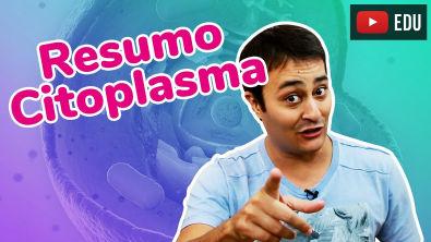 Organelas Citoplasmáticas | JubiResumo | Prof Paulo Jubilut