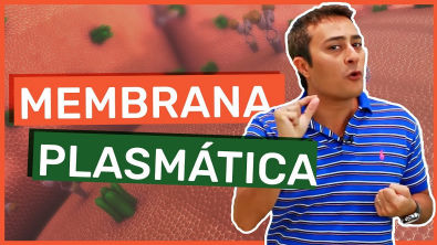 Membrana Plasmática | Célula | Prof Paulo Jubilut