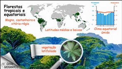 Climas e vegetações