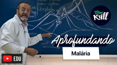Aprofundando   Malária