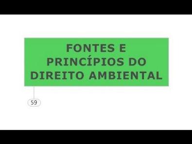 DIREITO AMBIENTAL FONTES E PRINCÍPIOS CONSTITUCIONAIS E GERAIS