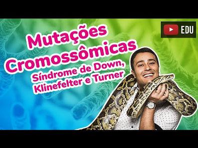 Mutações Cromossômicas - Síndrome de Down, Klinefelter e Turner - Prof Paulo Jubilut