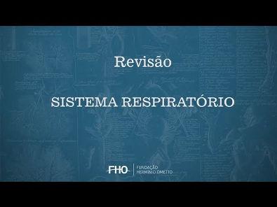 Sistema Respiratório - Anatomia Humana