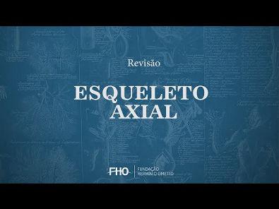 Esqueleto Axial - Anatomia Humana