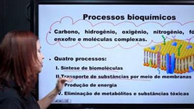 Introdução à Bioquímica - Brasil Escola
