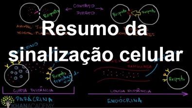 Resumo da sinalização celular | Sinalização celular | Biologia | Khan Academy