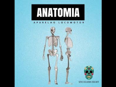 Aula do curso: Anatomia: Aparelho Locomotor