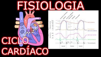 Aula: Fisiologia Cardíaca - Ciclo Cardíaco   Fisiologia Cardiovascular Humana #1