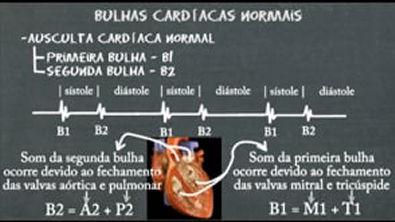 y2mate com - ausculta_cardiaca_normal_NFb3K3I5s7w_360p