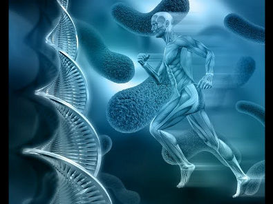Sistema Glicolítico: glicólise anaeróbia