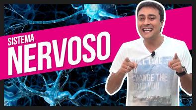 Sistema Nervoso | Prof Paulo Jubilut